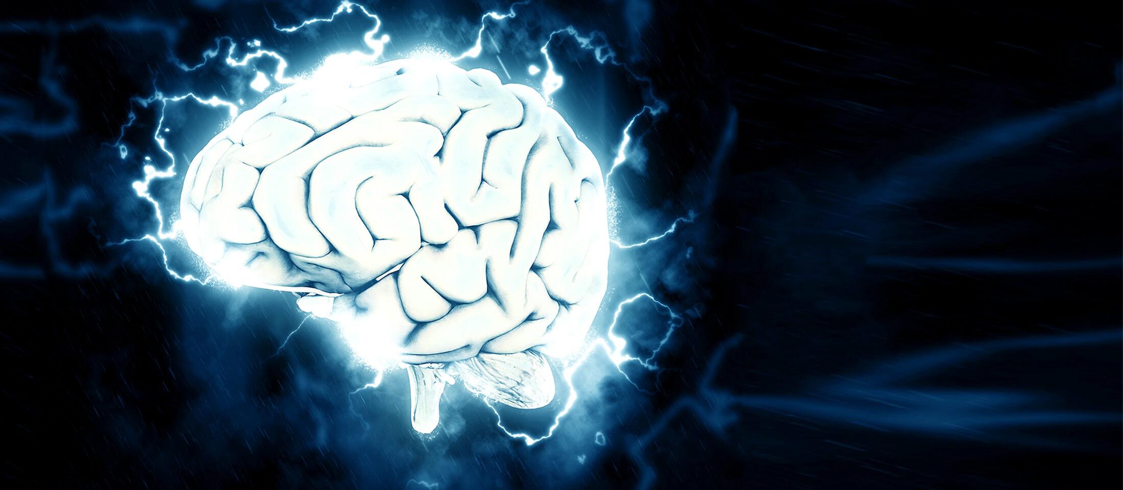 brain_slider